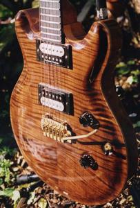 HP Guitars tiger front4